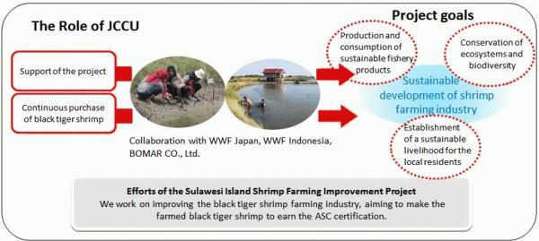 sulawesi-shrimp-project-chart.JPG